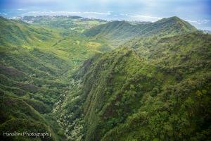 Maui Photographer-17