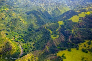 Maui Photographer-23