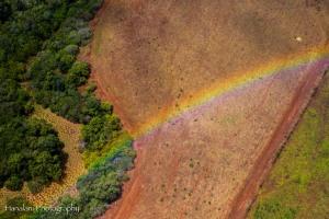 Maui Photographer-24