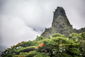 Maui photographer-3