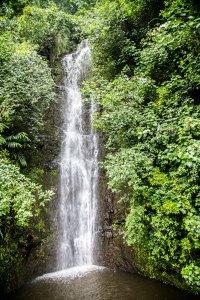 Maui photographer-8