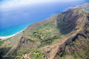 Maui Photographer-9