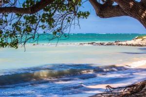 Kanaha Beach Park-10