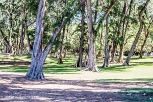 Kanaha Beach Park-12