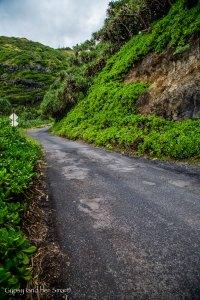 Road from Hana-5