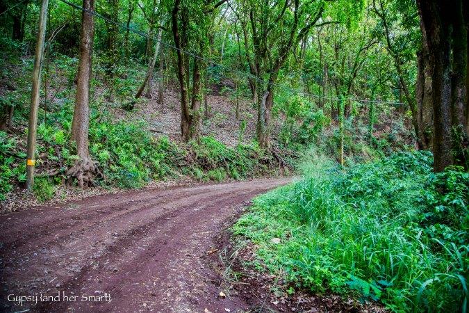 Road from Hana-7