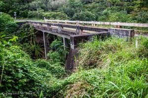 Road from Hana-8